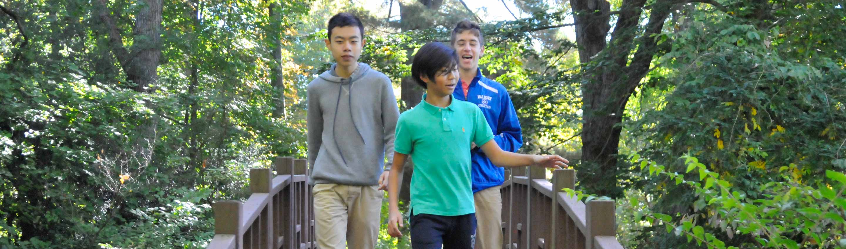 Admissions Process Faqs Waldorf School Of Garden City